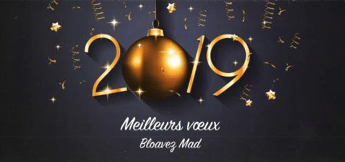 Voeux_2019-mairie_plomeur