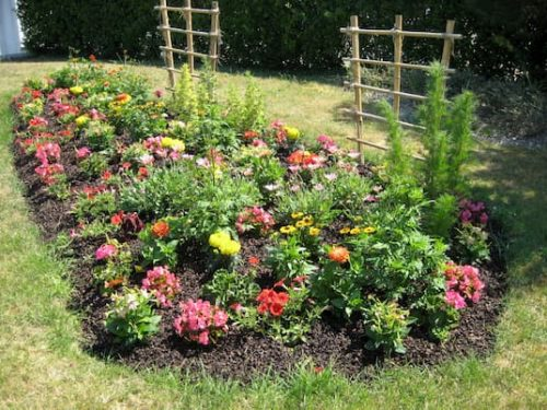 Photo actualité jardins et maisons fleuris de Plomeur